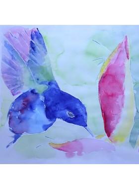BLUE HUMMINGBIRD Pictures