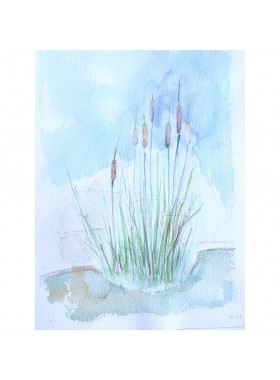 CATTAILS Pictures