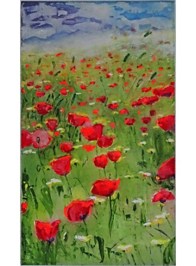 FIELD OF POPPIES Pictures